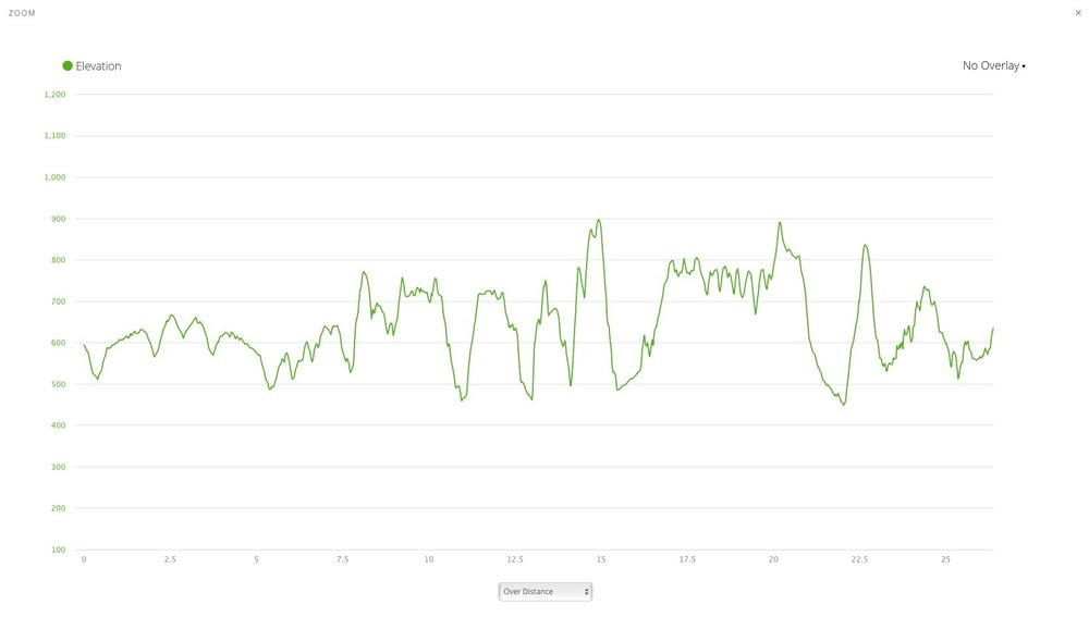 Course has 4,206 ft of Elevation Gain with a similar amount of Descent.