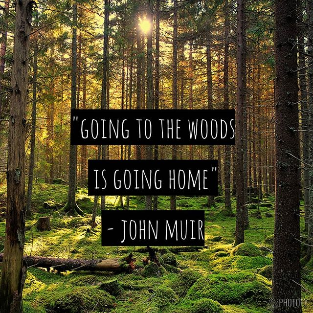 Get Outdoors!  What Could Be Better?  #getoutside #getoutdoors #hiking #biking #climbing #camping #natureshealing #nature #whatcouldbebetter #trailrunning #trails #woods #nationalparkservice  #naturesheart