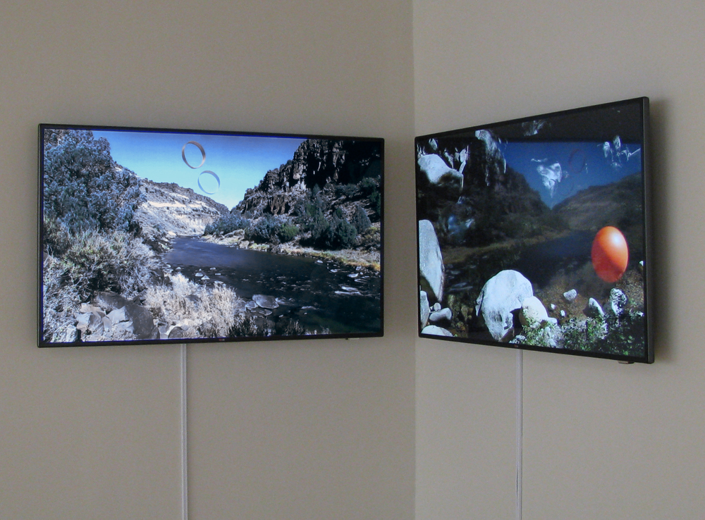 We Shared a Horizon, 2014, Installation View, Robert and Elaine Stein Gallery, Wright Sate University, Dayton, Ohio