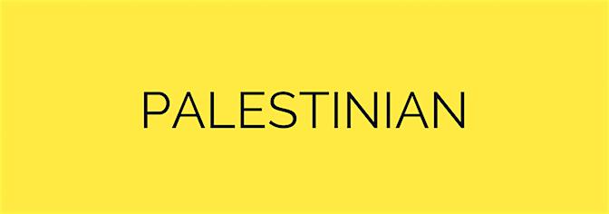 Palestinian button.png