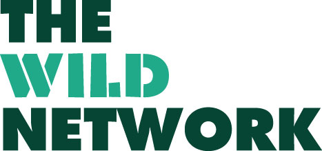 wild network.jpg