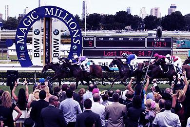 MAGIC MILLIONS RACES