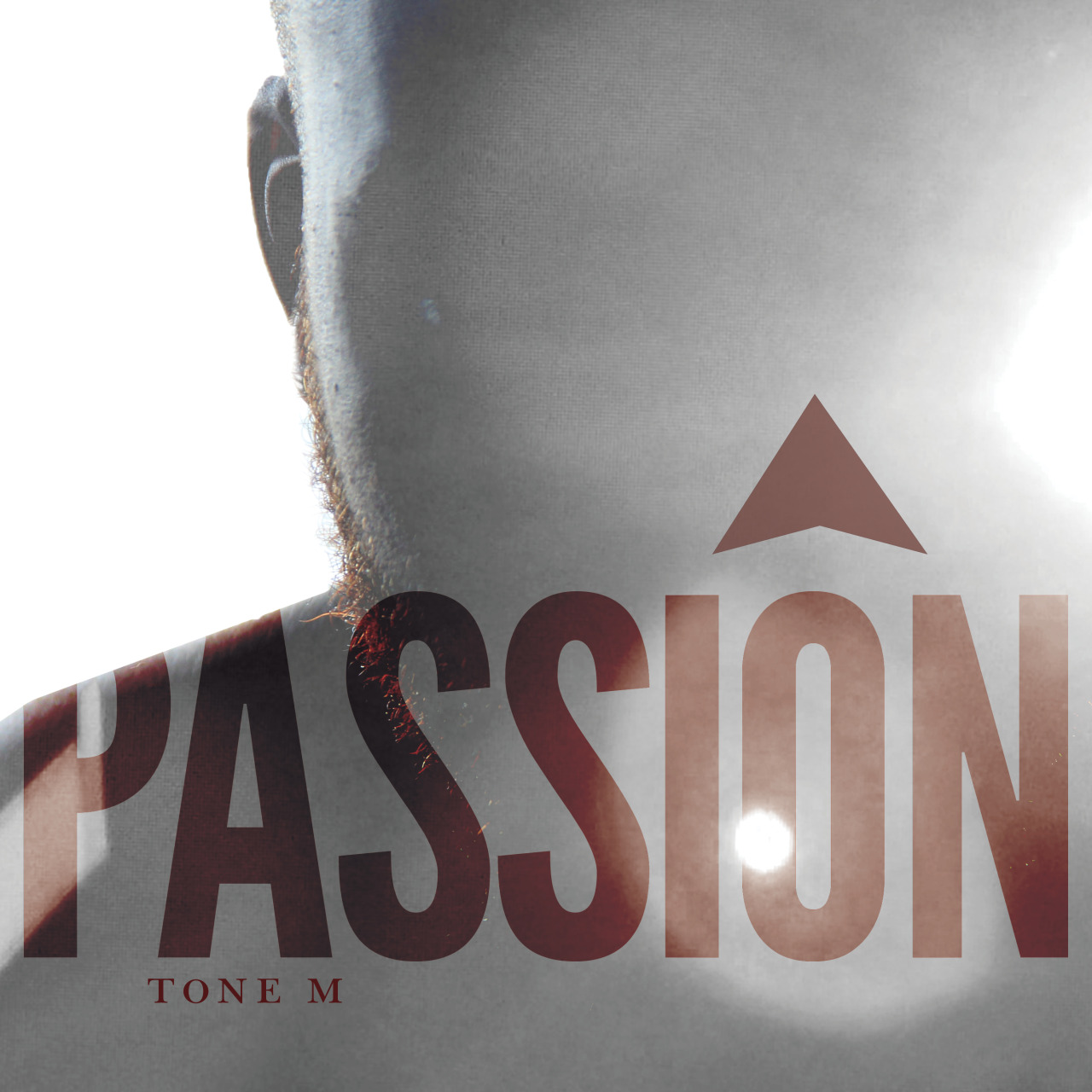 Cover Art 3 days to PASSION