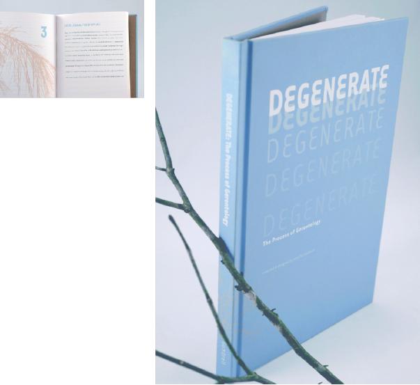 Degenerate3.jpg