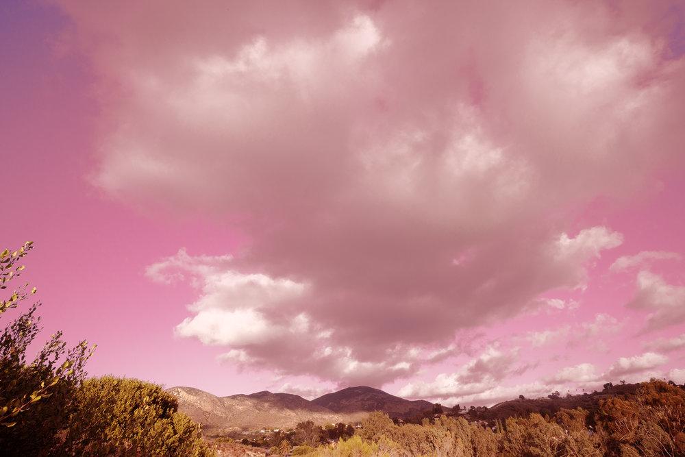 webb_pink2.jpg
