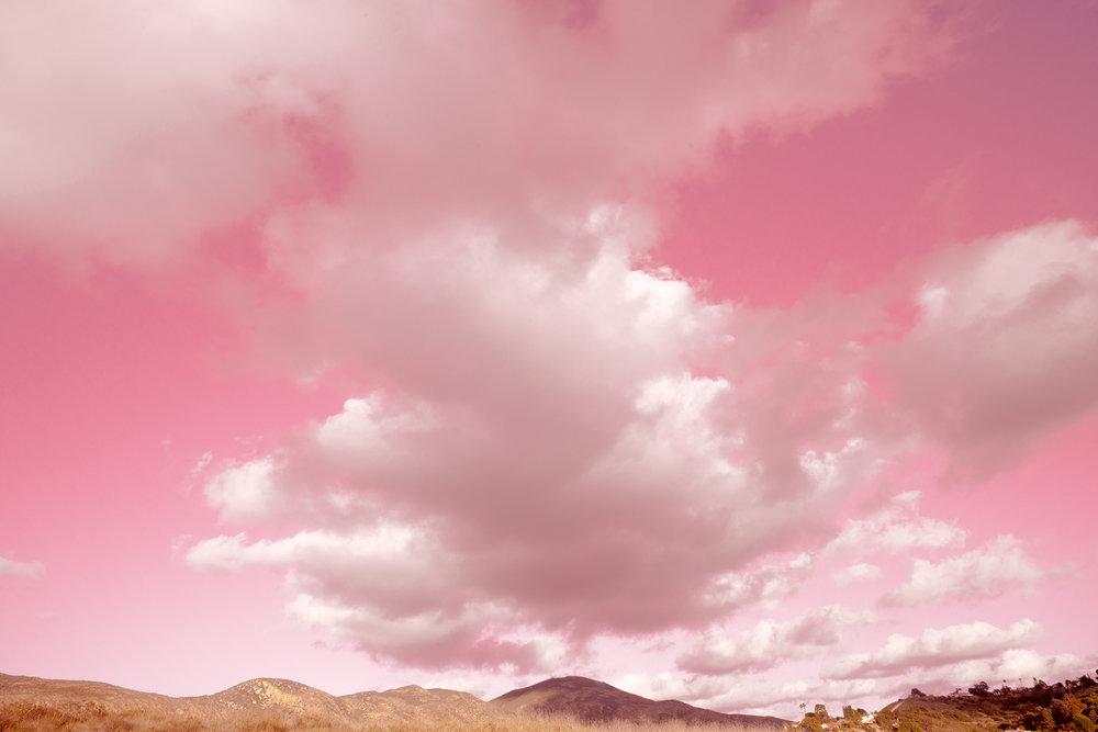 webb_pink3..jpg