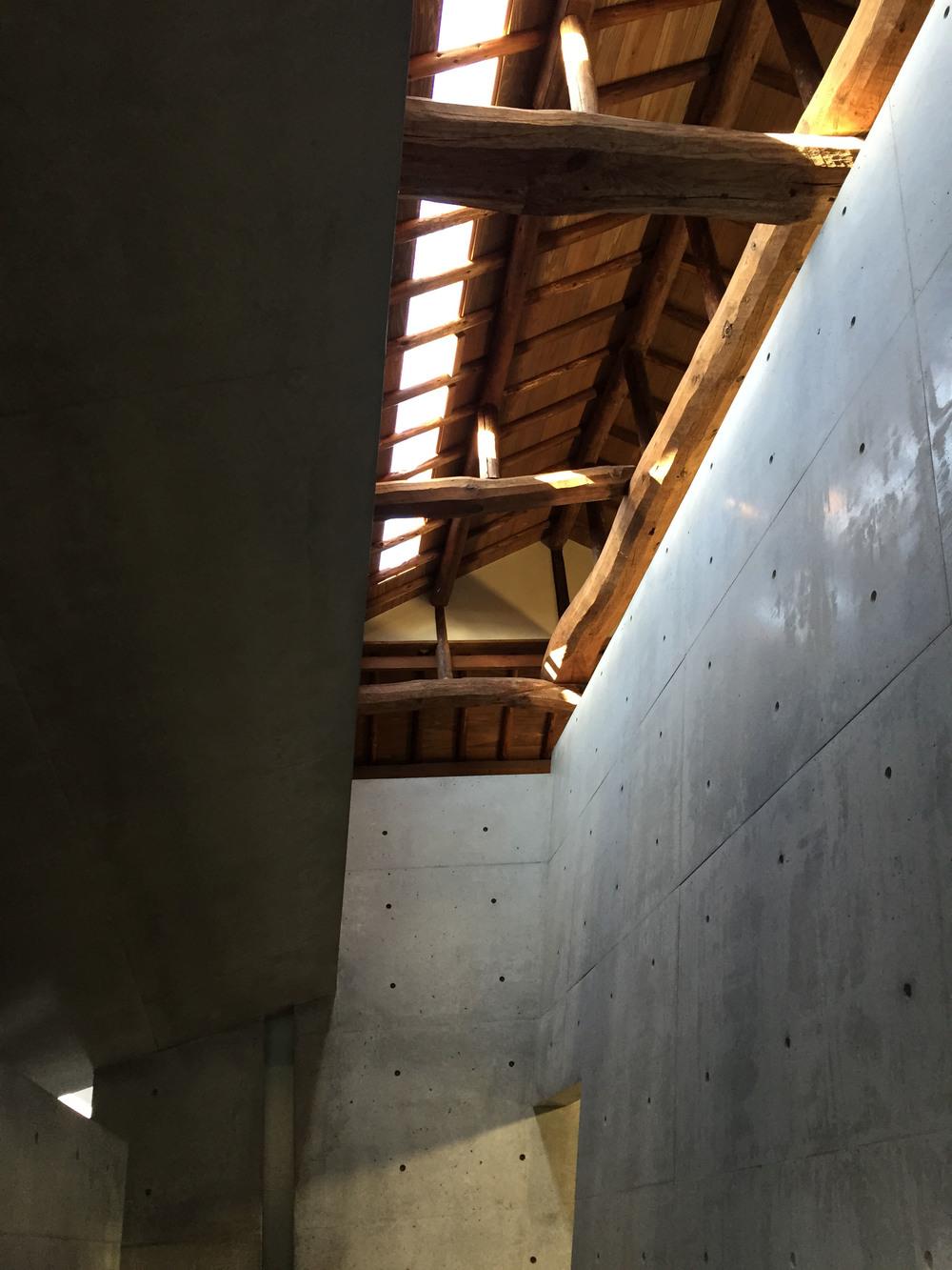 抬頭可見木造老屋下包覆著 Ando 清水模