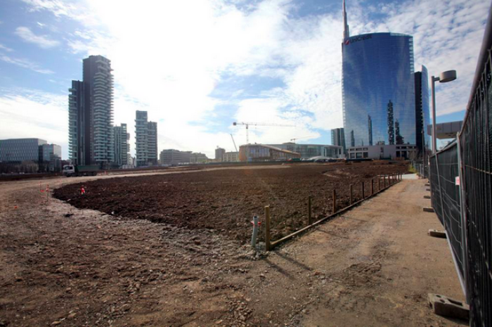 """Wheatfield""   in progress at Porta Nuova, Milan"