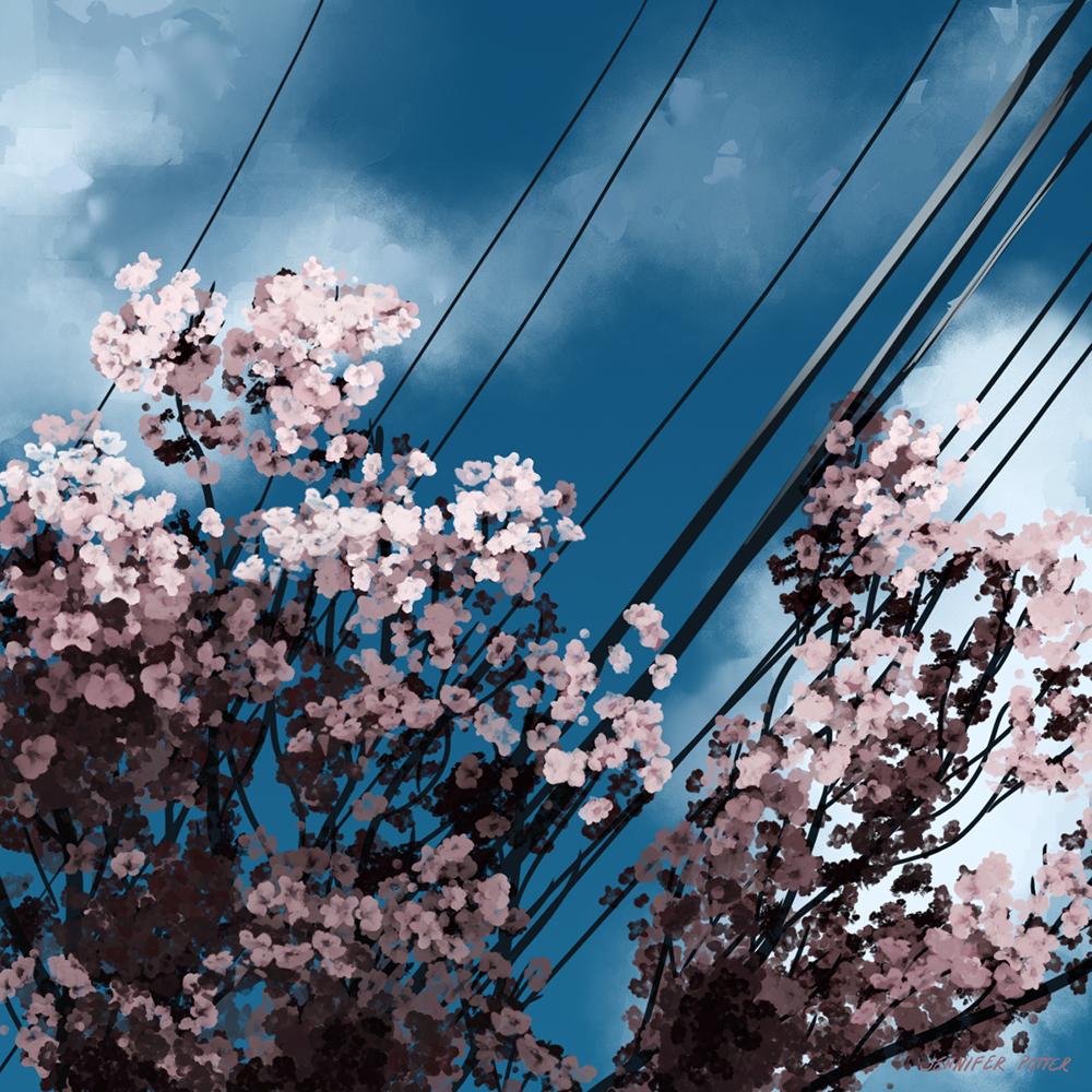 sky02_print.jpg