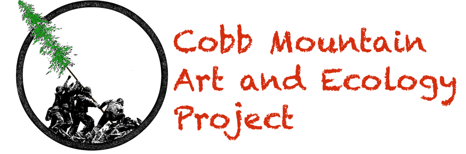Cobb Mountain Art and Ecology Project