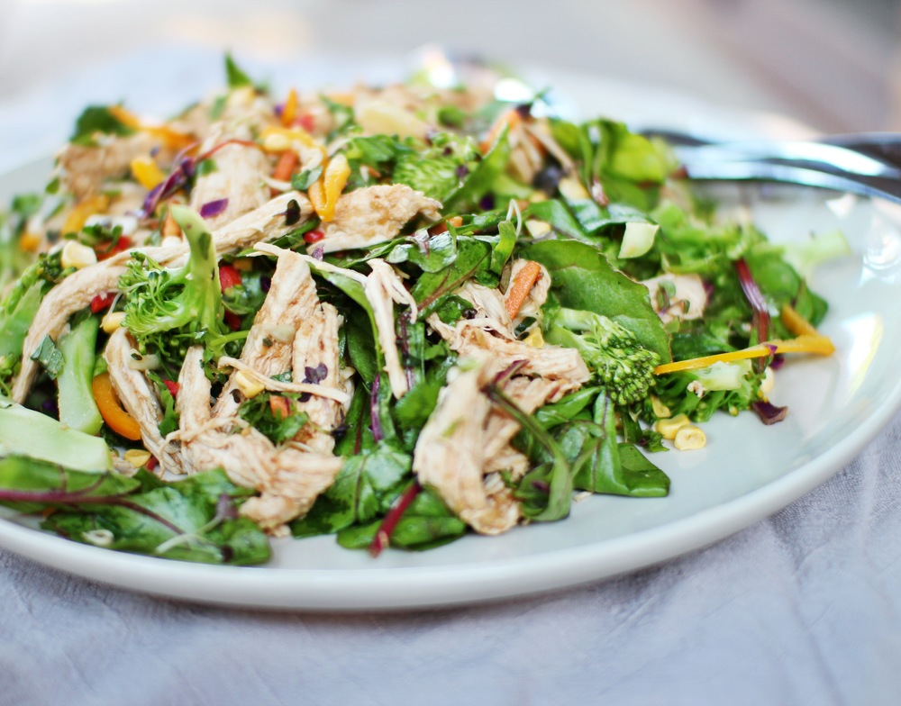 Poached Chicken Salad with Miso Dressing