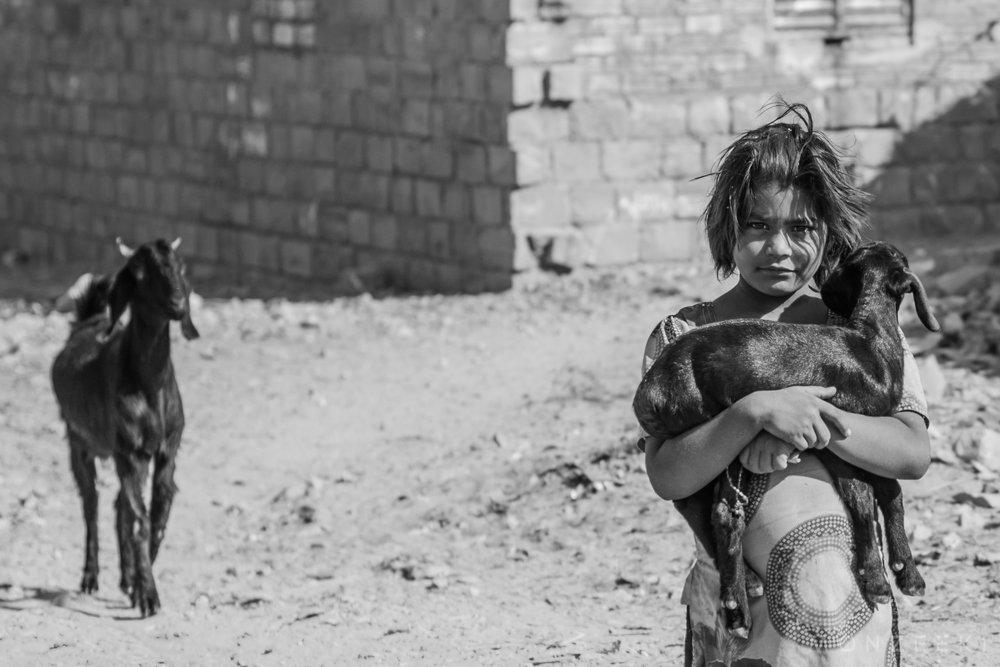 20150117-India-Jaisalmer-4266.jpg
