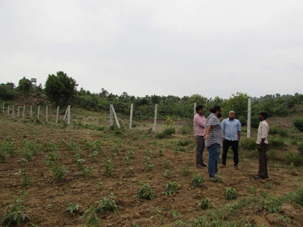 THE AMANA TEAM WITH AN ORGANIC FARMER IN YAVATMAL, VIDARBHA, MAHARASHTRA