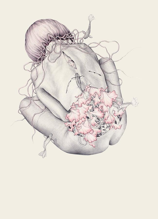 jellyfish VIWEB.jpg