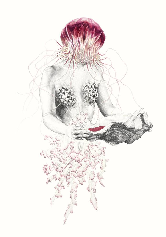 jellyfish III.jpg