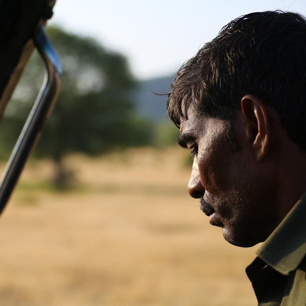 RANTHAMBORE SAFARI Co.