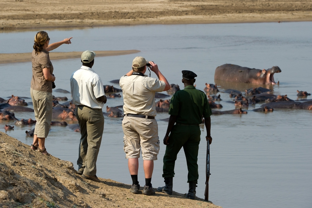 LC 2012 - Walking Safari23.jpg