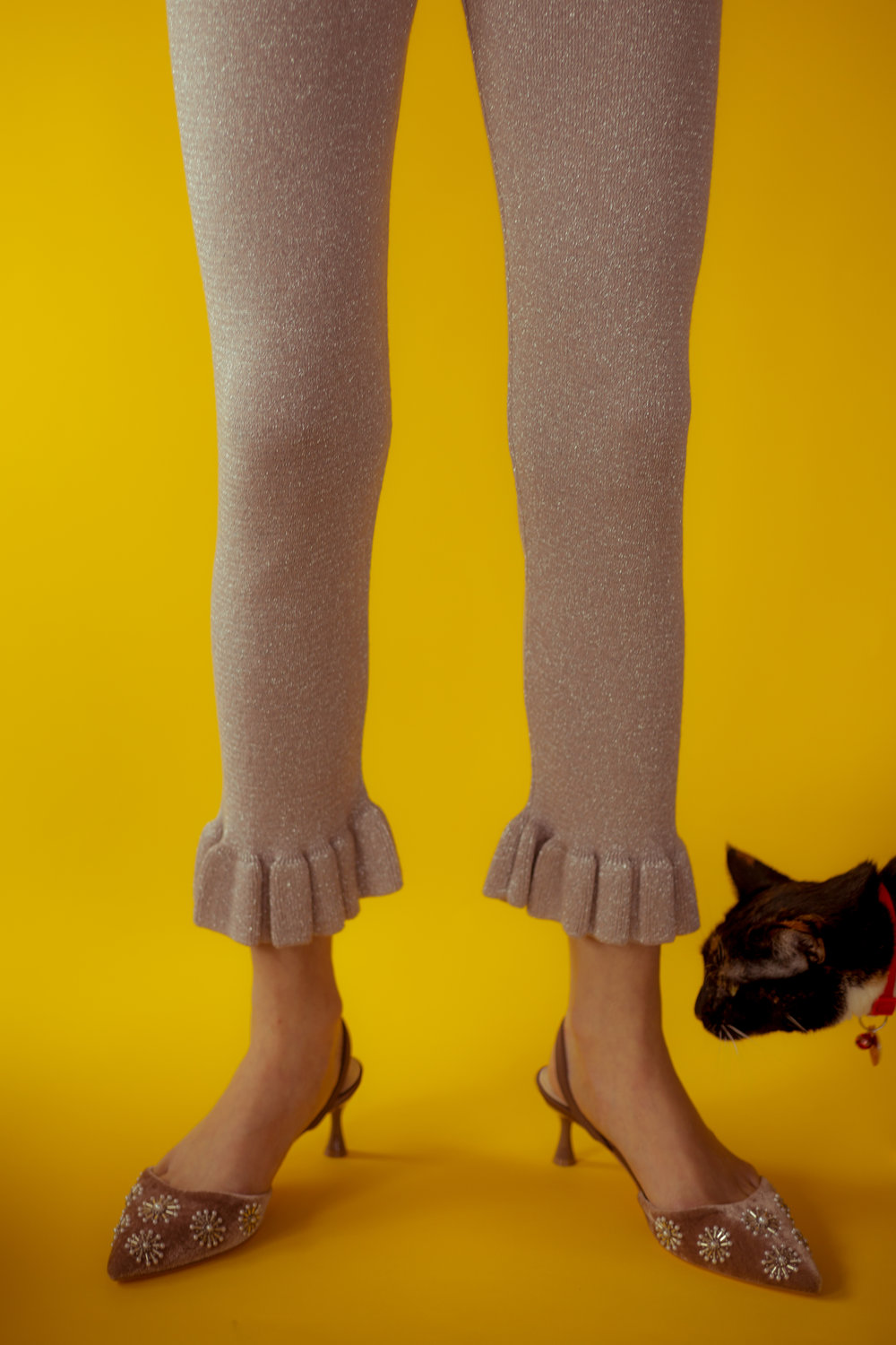 excuse me, miss. - do you have these in my size? said the interrupting feline