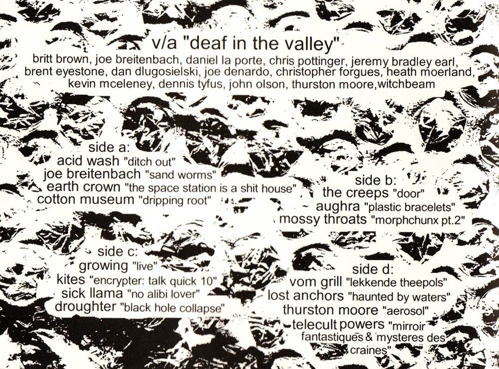 DEAF-IN-THE-VALLEY---BACK.jpg