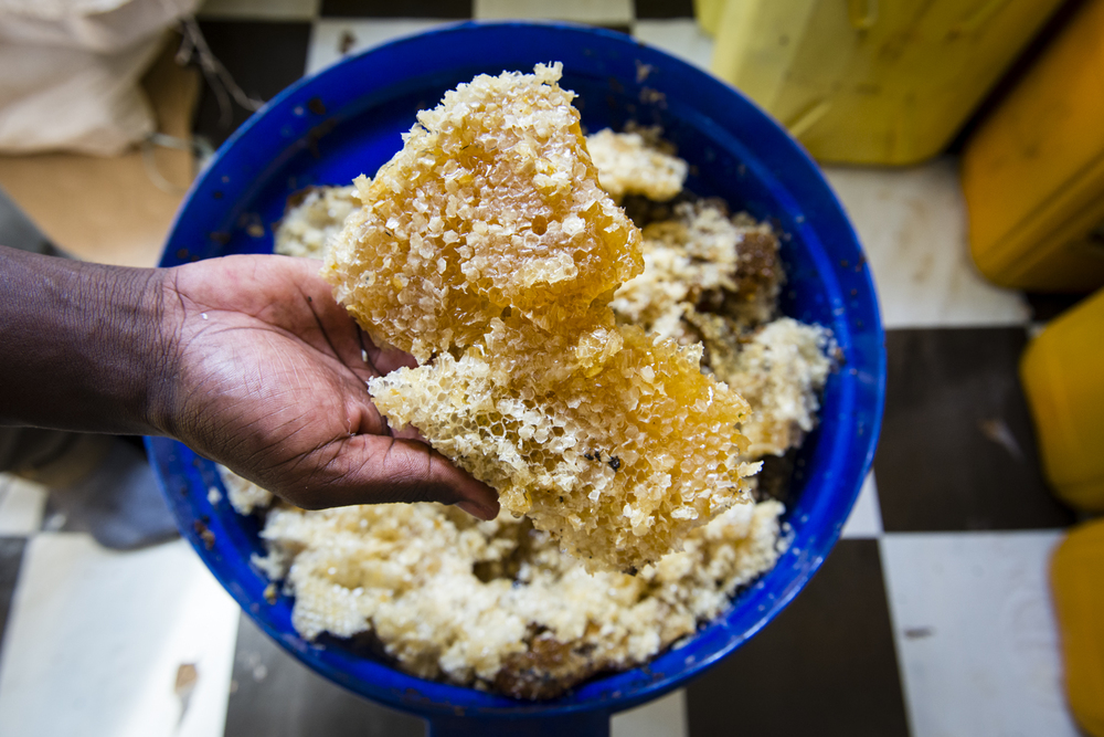 Bee House Products, honey, propolis and wax producer, Kampala, Uganda