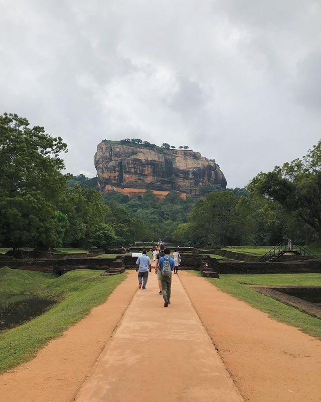 Sigiriya | Sinhagiri | 🦁 Rock . . #srilanka #sridriptrip #sigiriya #letsgosomewhere #mytinyatlas #lifewelltravelled #neverstopexploring #liveauthentic