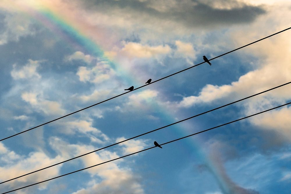 Regenbogen am Himmel