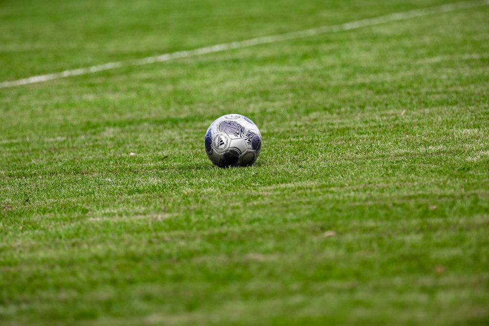 Adidas Fußball auf dem Rasen