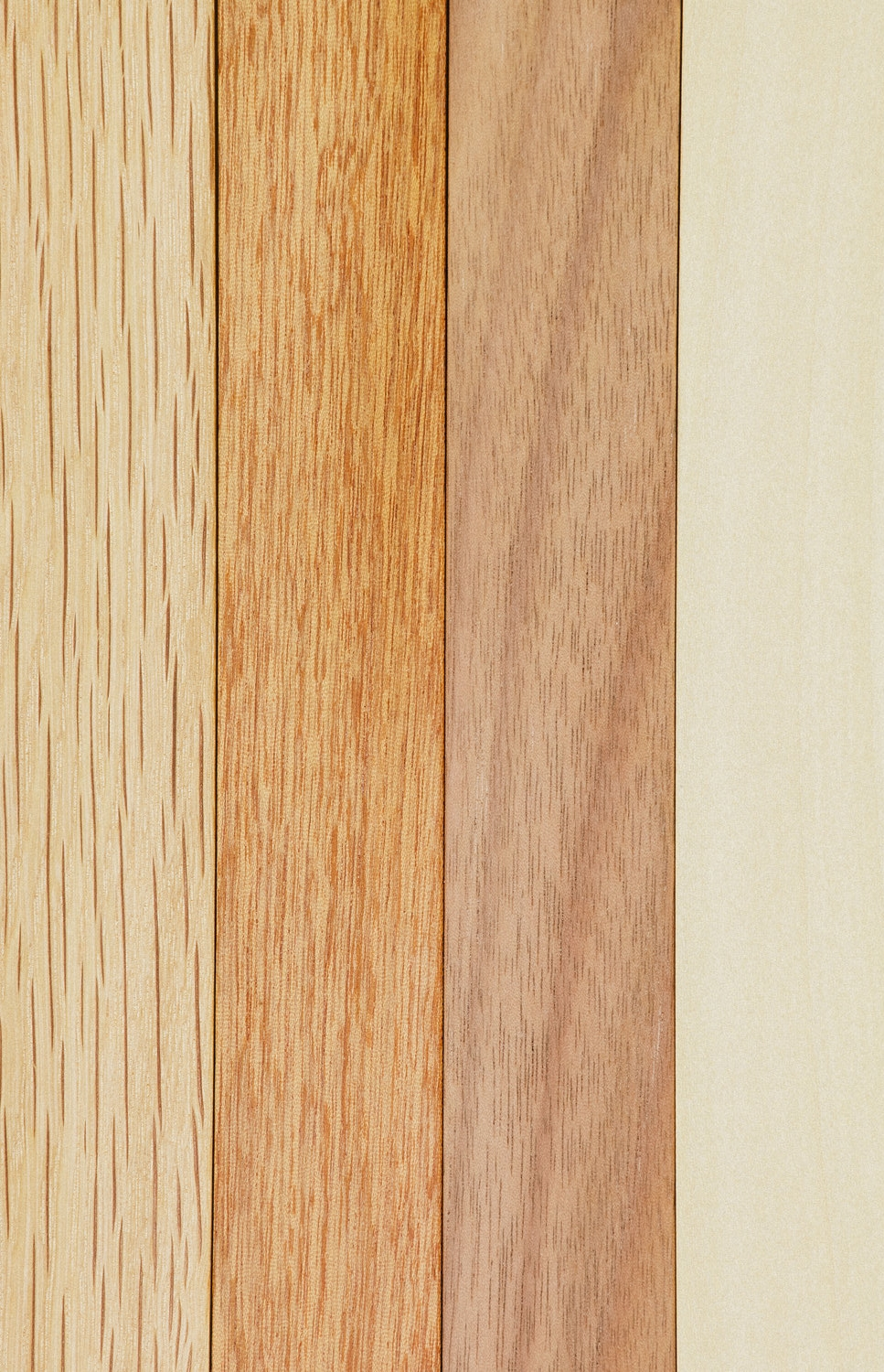 FOUR-WOODS-CLOSE-UP.jpg