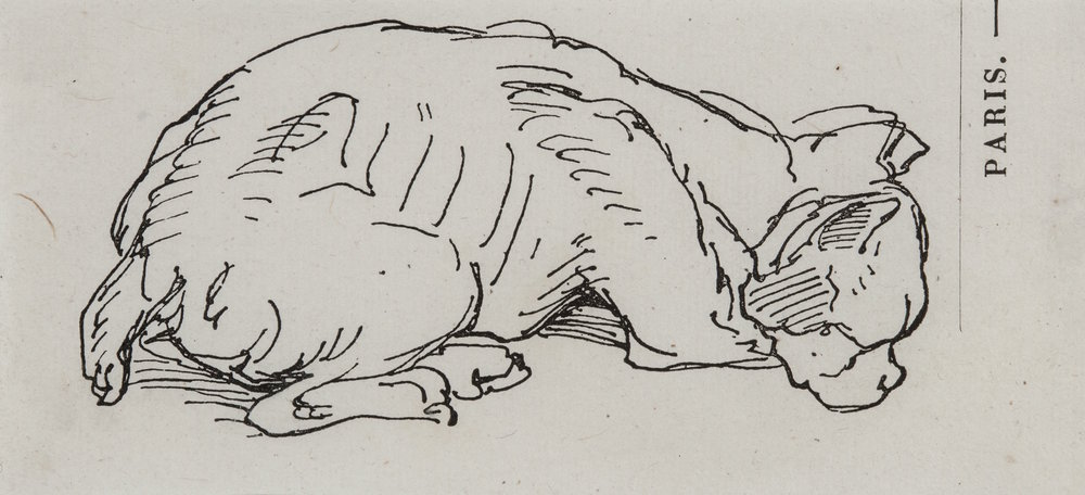Rousseau - Sleeping Dog.jpg