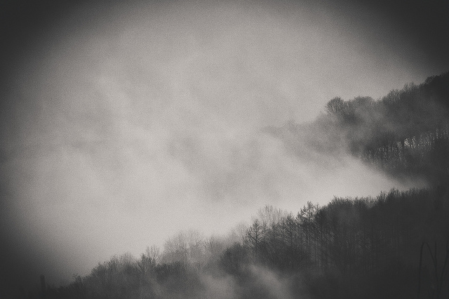 Fog  on Flickr.