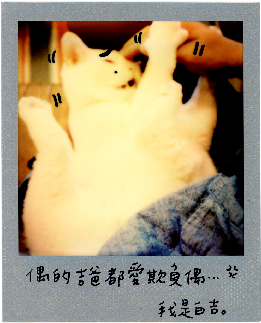 0707-2014-白吉-字.png