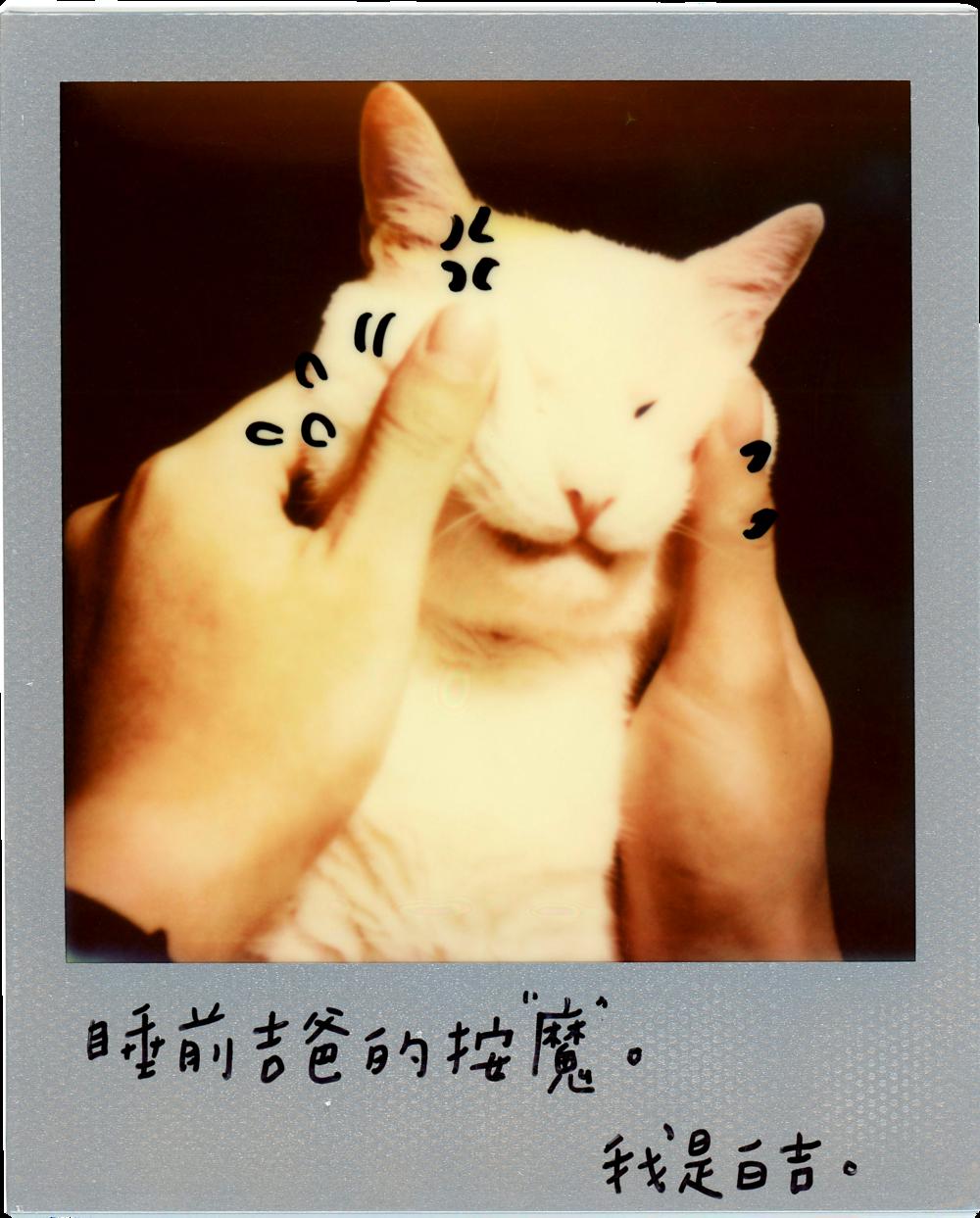 0707-2014-白吉-字3.png