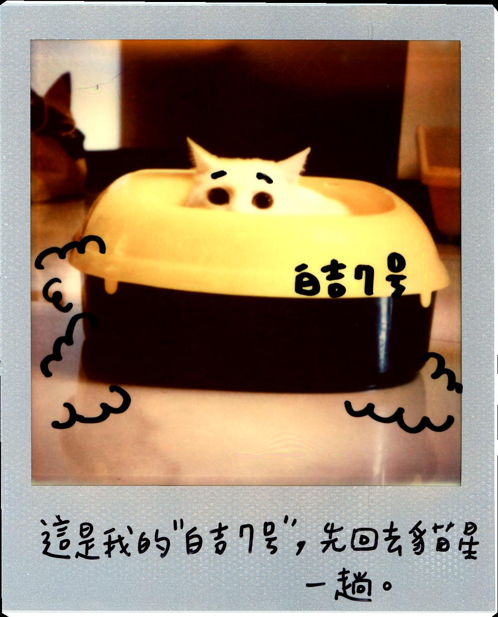 0707-2014-白吉-字5.png