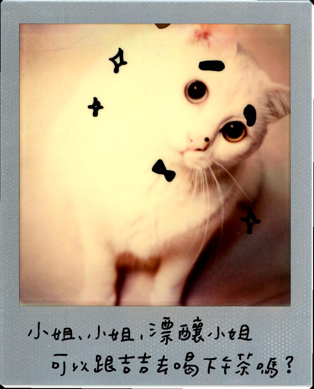 0707-2014-白吉-字6.png