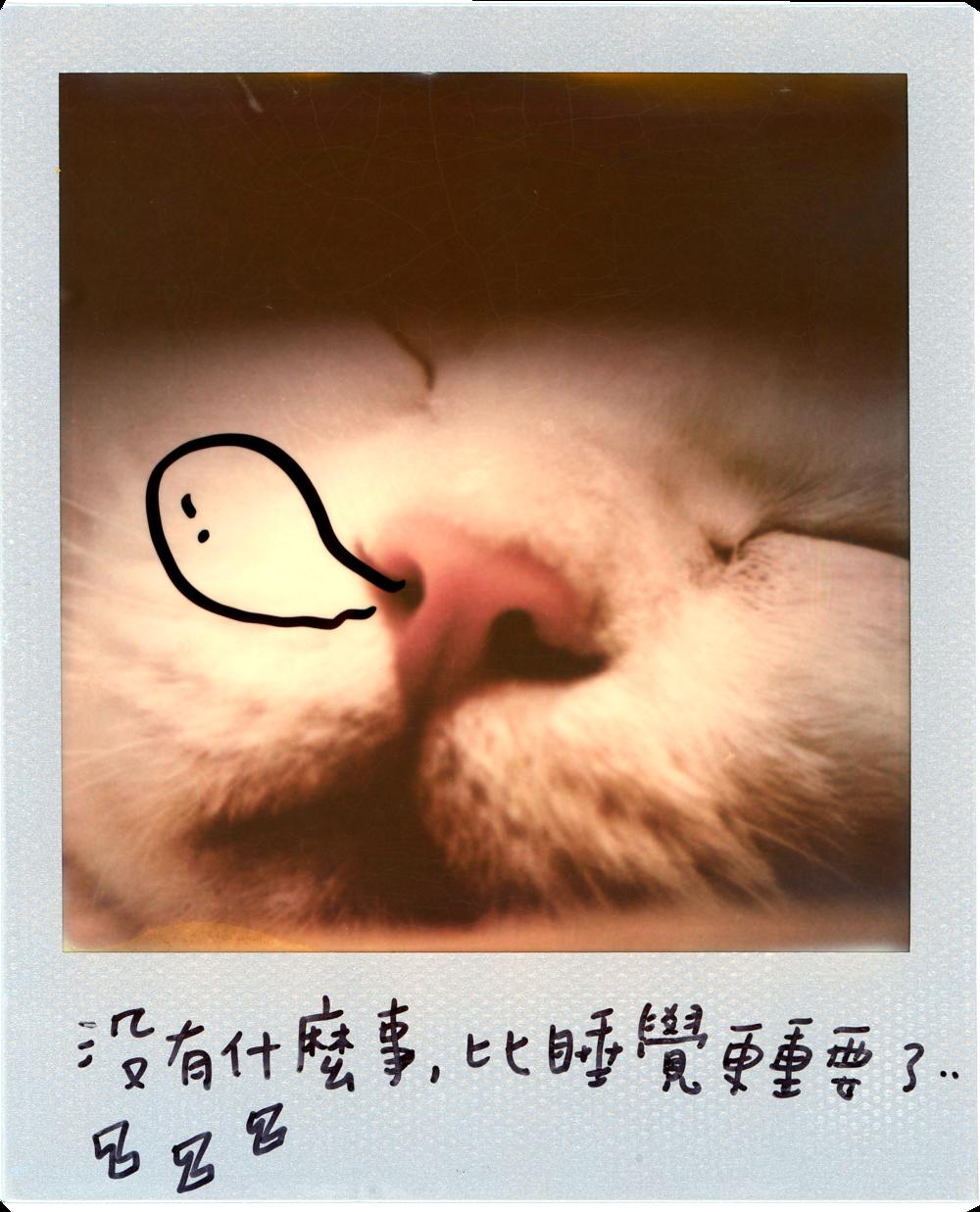 0707-2014-白吉-字7.png