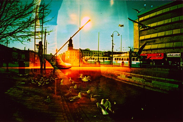 Lomography:Photo by anarchy