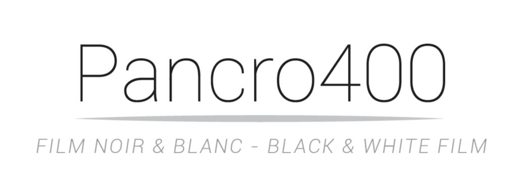 bergger Pancro 400 D.png