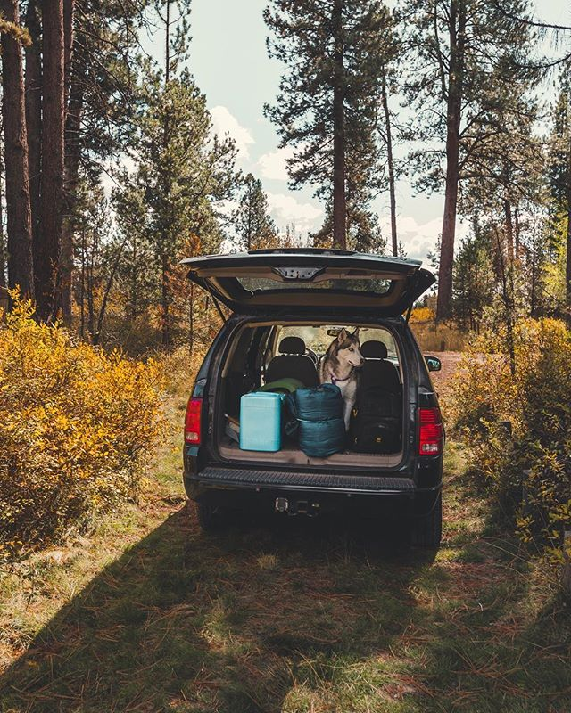 All the essentials packed. Wonder where the day will take us? . . . . . . . . . . . . . #Oregon #adventure #travel #husky #cars #outdoors #photography #hiking #camping #mood #autumn #fall #colorchange #roadtrip #nature #liveoutdoors #dogs