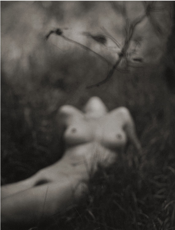 Susan #4 - Splendid Grass, 1997  Platinum/Palladium photograph.  14 7/8 x 11 11/16 inches