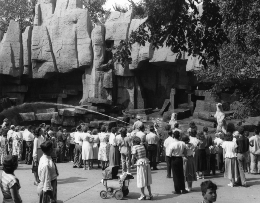 Brookfield Zoo , 1930s   Gelatin silver photograph.   7 5/8 x 9 1/2 inches