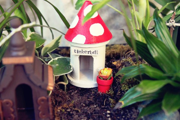 Mini Makers Club  Fairy Or Gnome Garden, Wednesday, June 21st, 9 AM  12 PM
