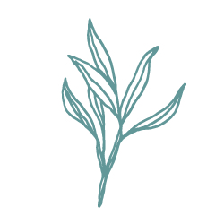 05_Leaves-100.jpg