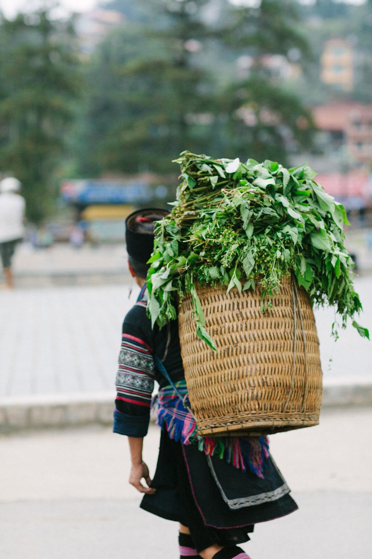 SaPaVietnam-21.jpg