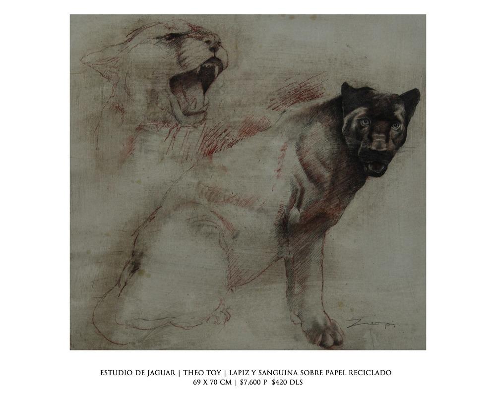 estudio jaguar.jpg