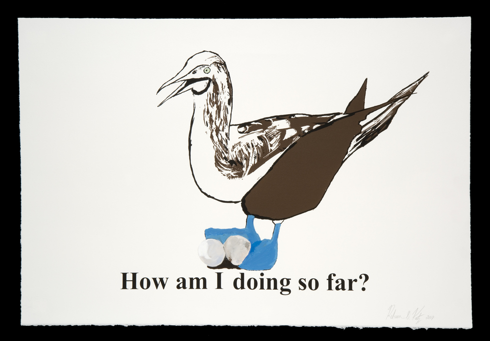How am I doing so far? (Blue-footed booby)