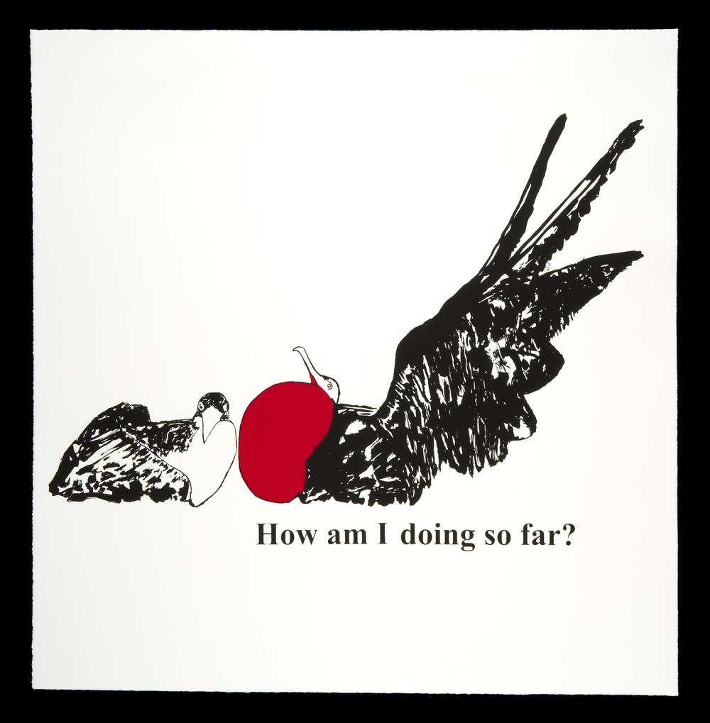 How am I doing so far? (Frigatebirds)