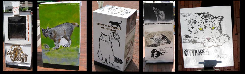 CityPaper Box