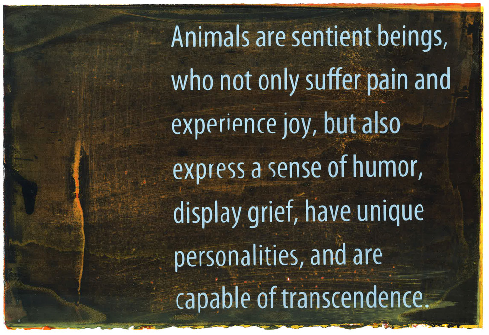 Animals are sentient beings