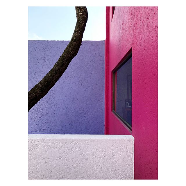 Bold moves  #CasaGilardi designed by renowned Mexican modernist Luís Barragán (#Barragan)  More in my stories