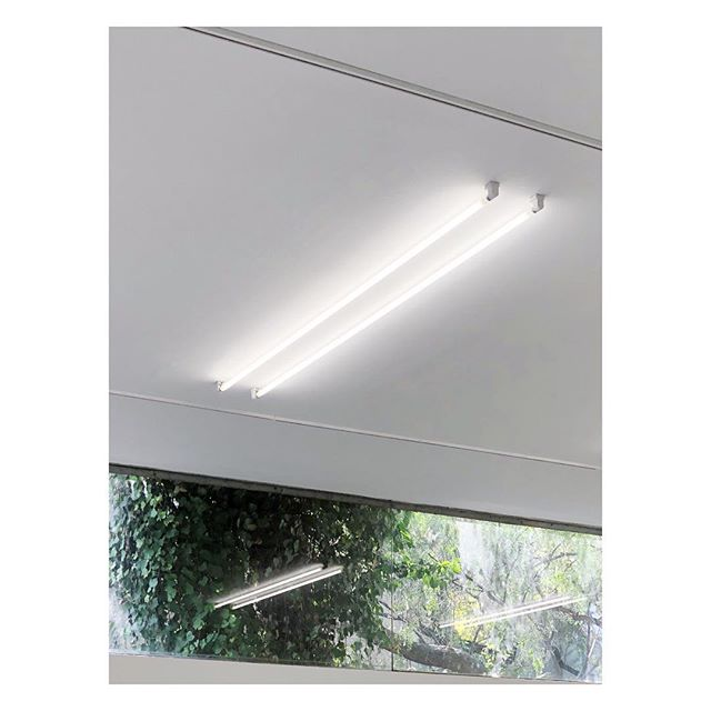 Labor of love  Flourescent lights with remote ballasts at @l_a_b_o_r #LaborGallery